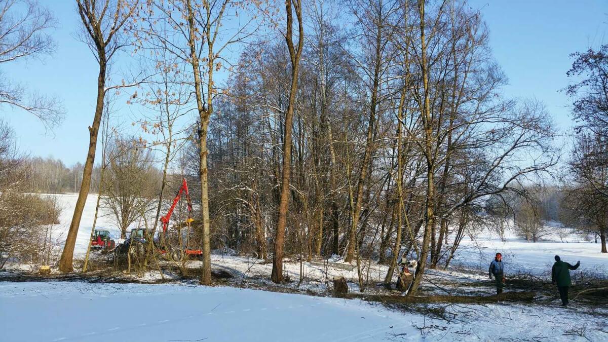 Winterarbeit GK3